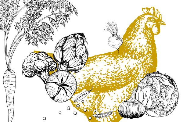 Orizuru créations | Ferme Vignola